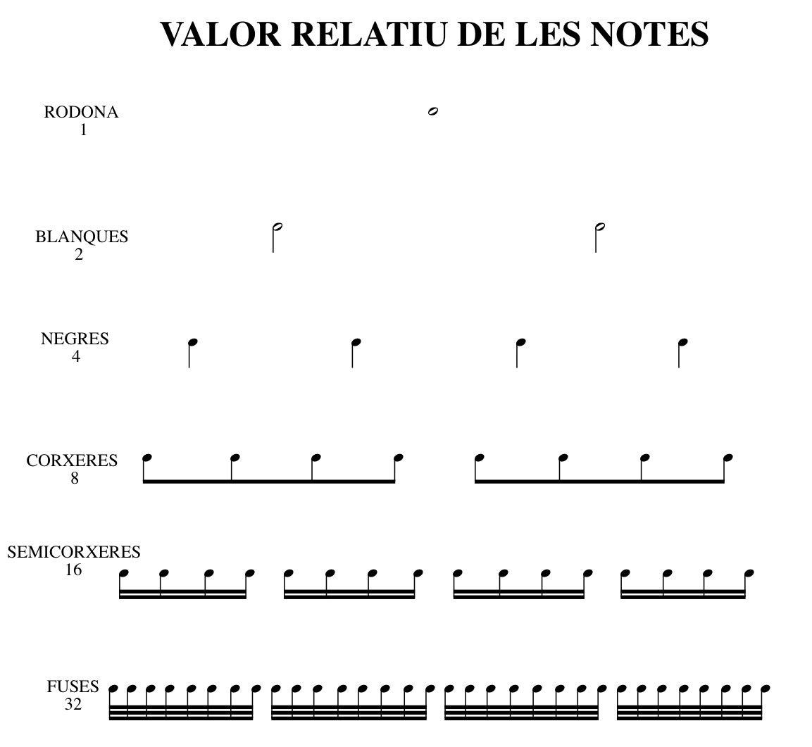 VALOR RELATIU DE LES NOTES.jpg